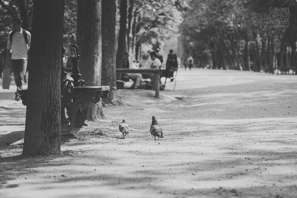 Photographe de famille - Un reportage photos « Une fille à Paris » - Une première visite à la capitale