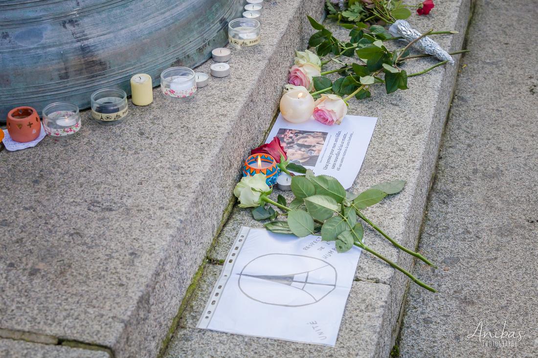 #JeSuisParis - Rassemblement en hommages aux victimes à Villedieu-les-Poêles - Attentat à Paris
