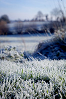 Portraits-frost-anibas-photo-fb-5870