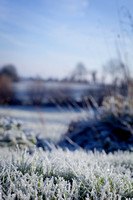 Portraits-frost-anibas-photo-fb-5876