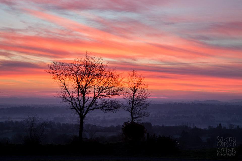 Lever de soleil sur la campagne normande ce matin © Anibas Photography Winter morning sunrise over the #Normandy countryside this morning #Manche #Calvados #Normandie #CestBeauLaManche Photos prises à Montbray (50) vers Vire/Saint-Sever-Calvados (14)