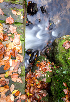 IMG_6466-Anibas-Photography-autumn-water